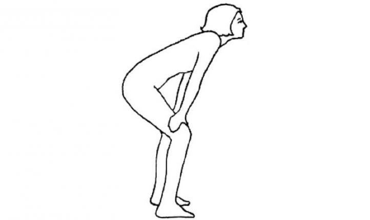 Лев - базовый комплекс упражнений Бодифлекс